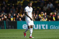 Luciano Narsingh of Swansea City during the Premier League match between Watford and Swansea City at Vicarage Road Stadium, Watford, England, UK. Saturday 15 April 2017