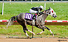 Youcancountonme winning at Delaware Park on 6/20/13