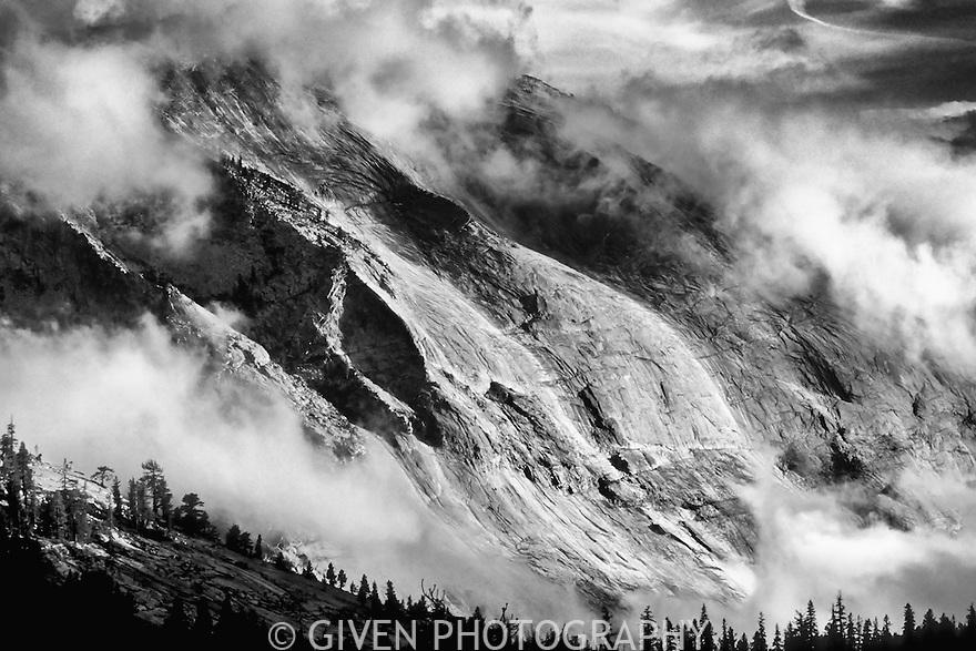 Queen Elizabeth Range, Jasper National Park, Canada