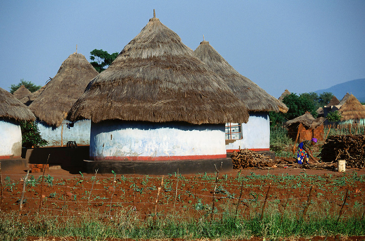A typical roundhouse in Mingha Village, Venda (North Transvaal) South Africa.
