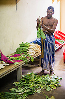 Worker at Dambulla wholesale vegetable market, Dambulla, Central Province, Sri Lanka, Asia. This is a photo of a worker at Dambulla wholesale vegetable market, Dambulla, Central Province, Sri Lanka, Asia.