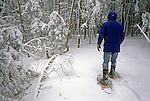 Snowshoeing in Acadia National Park, Maine, USA
