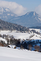Austria, Styria, Styrian Salzkammergut, Altausseerland, community Altaussee, district Lupitsch: deeply snowed in
