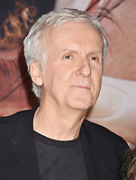 WESTWOOD, CA - FEBRUARY 05: James Cameron attends the Premiere Of 20th Century Fox's 'Alita: Battle Angel' at Westwood Regency Theater on February 05, 2019 in Los Angeles, California.<br /> CAP/ROT/TM<br /> ©TM/ROT/Capital Pictures