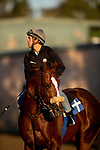 OCT 29: Breeders' Cup Mile entrant El Tormenta, trained by Gail Cox, at Santa Anita Park in Arcadia, California on Oct 29, 2019. Evers/Eclipse Sportswire/Breeders' Cup