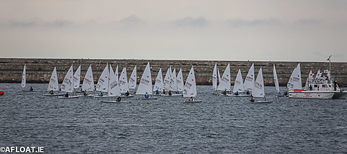 DBSC Laser Racing at Dun Laoghaire Harbour