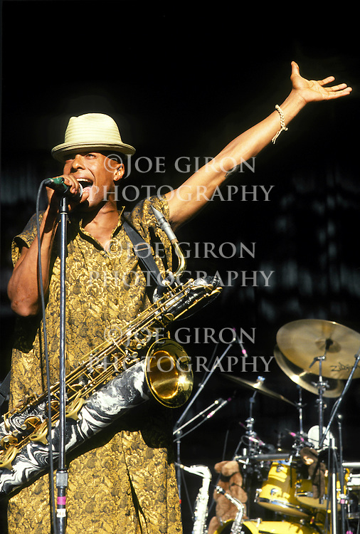 Various live photographs of the rock band, Fishbone.