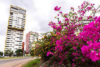 Landscapes - Street Life