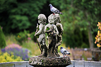 Pictured: Pigeons rest on the fountain statues. Friday 07 July 2017<br /> Re: Botanical Gardens in Singleton Park, Swansea, Wales, UK.