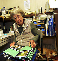 Pages from an album of dogs rescued from the nuclear evacuation zone by ARK animal refuge outside Osaka, Japan, 26th May 2011.  ARK has rescued more than 200 dogs, 16 cats and a guinea pig from with-in the nuclear exclusion zone surrounding the Fukushima Daiichi nuclear power plant in Japan...© Richard Jones/ sinopix.PHOTO BY SINOPIX