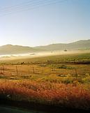 USA, California, field and morning fog against clear sky, Fort Jones