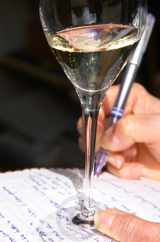 In the tasting room: a person holding a glass of champagne and a note pad taking writing down tasting notes with a blue pen, Champagne Larmandier-Bernier, Vertus, Cote des Blancs, Champagne, Marne, Ardennes, France