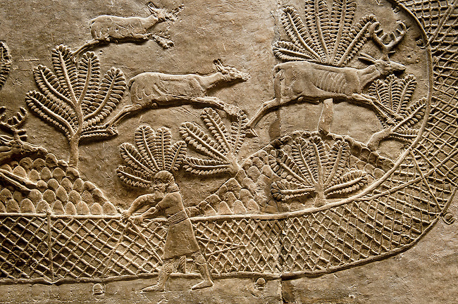 Assyrian relief sculpture panel of man stretching a net across the escape route of a herb of deer that are being hunted.  From Nimrud, Iraq,  865-860 B.C North Palace, room S, panel 17-18.  British Museum Assyrian  Archaeological exhibit no WA 124871.