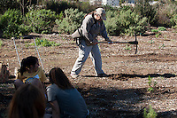 South Pasadena Nature Park. Occidental College's MLK Day of Service on Saturday, Jan. 28, 2012. Students, staff and alumni volunteered their day to help in the community. (Photo by Marc Campos, Occidental College Photographer)
