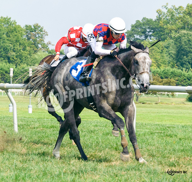 Cort'n Asong winning at Delaware Park on 9/8/16