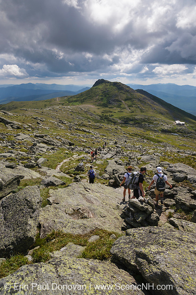 Hikers traveling along the Tuckerman Crossover Trail in Sargent's Purchase in the New Hampshire White Mountains on a cloudy summer day; this area is part of the Southern Presidential Range. Named after James Monroe, the fifth President of the United States, Mount Monroe is in view.