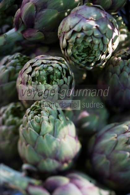 """Europe/France/Provence-Alpes-Cote d'Azur/04/ Alpes de Haute-Provence/Moustiers-Ste-Marie:   Artichauts petits violets du potager de l'hotel de charme la """"La Bastide de Moustiers"""""""