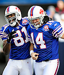29 November 2009: Buffalo Bills quarterback Ryan Fitzpatrick (14) celebrates his 31 yard touchdown run with wide receiver Terrell Owens (81) in the second quarter against the Miami Dolphins at Ralph Wilson Stadium in Orchard Park, New York. The Bills defeated the Dolphins 31-14. Mandatory Credit: Ed Wolfstein Photo