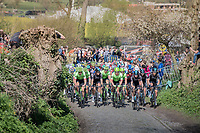 peloton over the Oude Kwaremont<br /> <br /> 101th Ronde Van Vlaanderen 2017 (1.UWT)<br /> 1day race: Antwerp › Oudenaarde - BEL (260km)