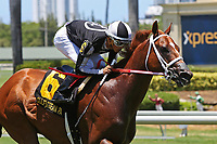 HALLANDALE BEACH, FL - JULY 01:   #6 Pay Any Price (FL) wth jockey Edgar Zayas on board, wins the Bob Umphrey Turf Stakes on Summit Of Speed Day at Gulfstream Park on July 01, 2017 in Hallandale Beach, Florida. (Photo by Liz Lamont/Eclipse Sportswire/Getty Images)