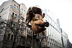 Kiev, Ukraine - 03 december 2013: A pig head used by a protester to symbolize ukrainian president Yanukovych. The dead pig wears a hat as a reminder that during his youth, Yanukovych had been condemned for stealing hats. Credit: Niels Ackermann / Rezo.ch
