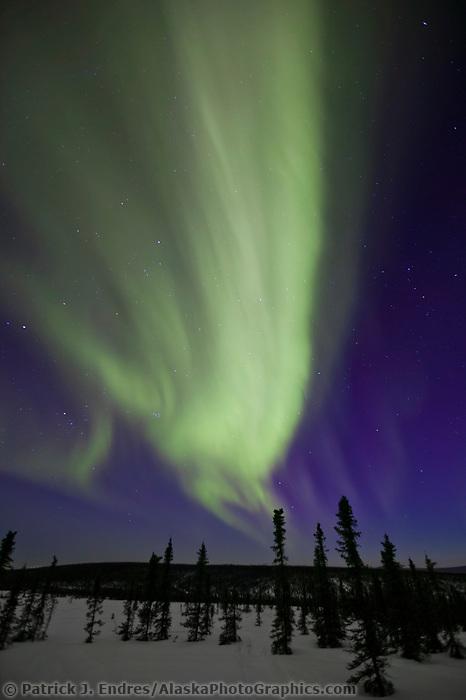 Aurora borealis sweeps across the night sky in the White Mountains National Recreation Area north of Fairbanks, Alaska