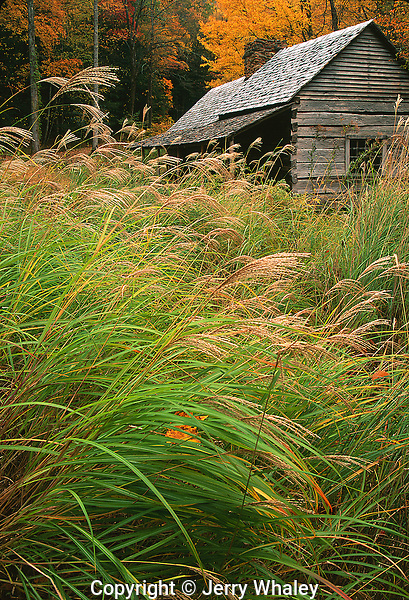 Bud Ogle Cabin, Autumn, Great Smoky Mountains National Park, TN