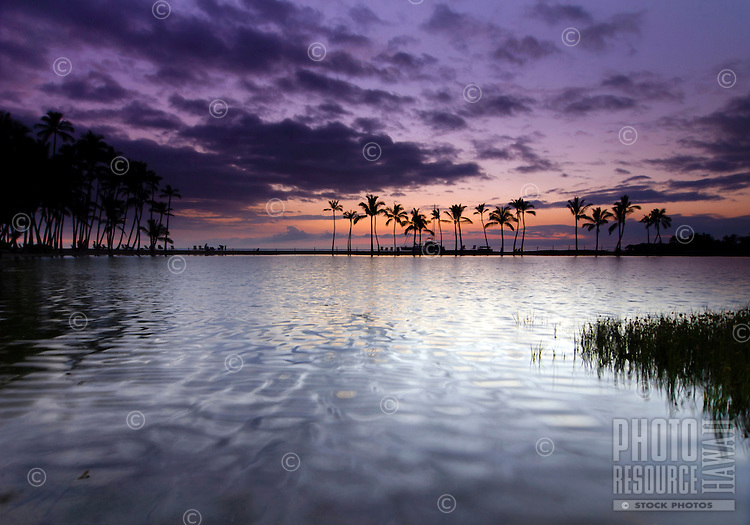Dusk at 'Anaeho'omalu Bay, as seen from across the Ku'uali'i fishpond, Waikoloa, Big Island.