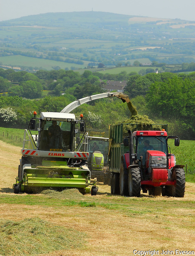 Contractor Tim Bloye of Callington forage harvesting 140 acres of grass on Philip Stansfield's Knowle Farm, Upton Cross, Liskeard, Cornwall. It will be used to feed the  herd of Black and White milkers which provide milk to make Cornish Blue cheese in the farm's dairy.