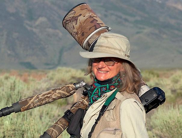 Marie Read bird photographer in the field, DeChambeau Ponds, Mono Lake Basin, California, USA