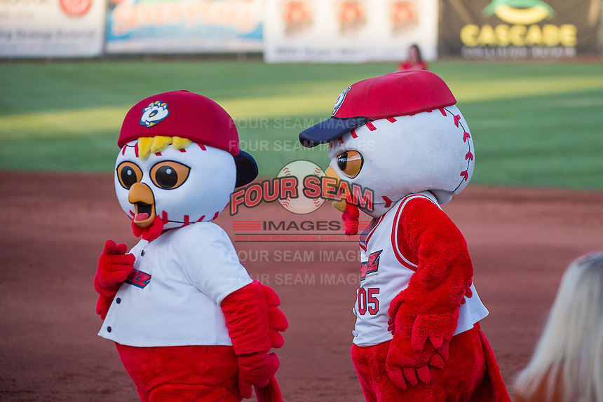 Rowly and Hootz the Orem Owls mascots during the game against the Ogden Raptors in Pioneer League action at Home of the Owlz on June 20, 2015 in Provo, Utah.  (Stephen Smith/Four Seam Images)