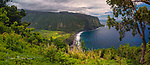 Waipio Valley Panorama, Big Island, Hawaii ©2017 James D Peterson.  This broad valley on the northwest side of the Big Island of Hawai'i is bordered by massive volcanic cliffs and a long beach.  The vegetation here is lush because this is the rain forest side of the Big Island.  This panoramic photo was made by stitching together eight separate images.