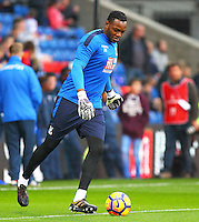 Crystal Palace goalkeeper Steve ManDanda warms up during the EPL - Premier League match between Crystal Palace and Liverpool at Selhurst Park, London, England on 29 October 2016. Photo by Steve McCarthy.