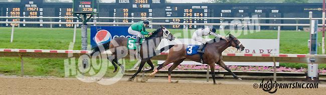 Brooks Lass winning at Delaware Park on 6/10/13