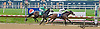 Brooks Lass winning at Delaware Park on 6/10/13