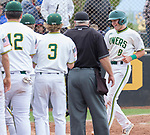 "Manogue's CJ Hires is congratulated by teammates after hitting a homerun against Reno in the NIAA 4A Northern Regional Baseball Championship ""if game"" at Galena High School in Reno, Nevada on Saturday, May 12, 2018."