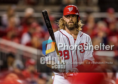 13 October 2016: Washington Nationals outfielder Jayson Werth in action during Game 5 of the NLDS against the Los Angeles Dodgers at Nationals Park in Washington, DC. The Dodgers edged out the Nationals 4-3, to take Game 5 of the Series, 3 games to 2, and move on to the National League Championship Series against the Chicago Cubs. Mandatory Credit: Ed Wolfstein Photo *** RAW (NEF) Image File Available ***