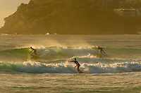 Surfing at sunrise, Manly Beach, Sydney, New South Wales, Australia