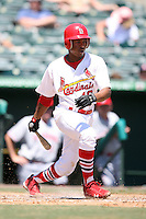 April 15, 2009:  Adron Chambers (10) of the Palm Beach Cardinals, Florida State League Class-A affiliate of the St. Louis Cardinals, during a game at Roger Dean Stadium in Jupiter, FL.  Photo by:  Mike Janes/Four Seam Images