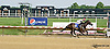 Hobe Wins winning at Delaware Park racetrack on 6/25/14