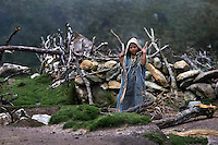 Arhuaco girl collecting fire wood, Sierra Nevada de Santa Marta, Colombia.