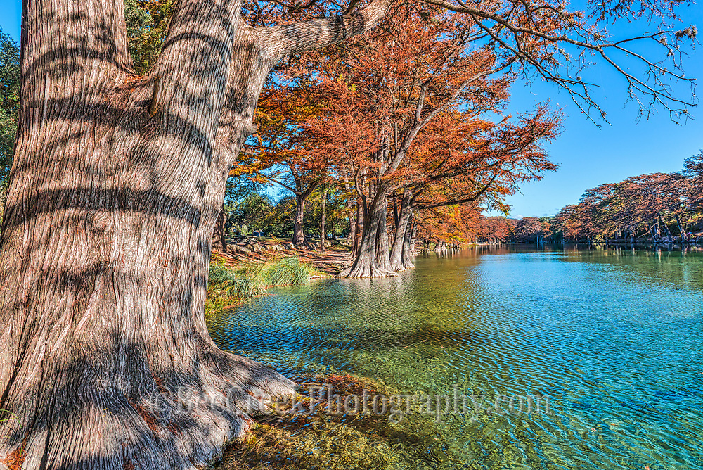 Garner State Park in the fall with the large cypress with their fall colors angainst the blue green waters of the Frio River can be a magical site.
