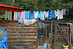 FROM THE KLONDIKE HIGHWAY,  CLOTHES LINE