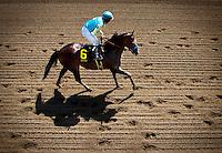 April 7, 2012. Paynter in the Santa Anita Derby(GI) at Santa Anita Park in Arcadia, CA.