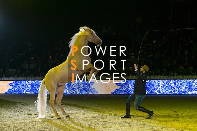 Santi Serra show presented by Shanghai Tang during Longines Masters of Hong Kong on 11 February 2017 at the Asia World Expo in Hong Kong, China. Photo by Marcio Rodrigo Machado / Power Sport Images