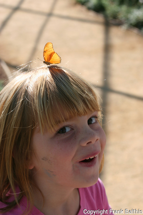 Girl with Julia Heliconia butterfly on head at Butterflies Alive, The Living Desert