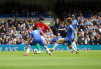 Pictured: Ki Sung Yeung runs at Chelsea defenders Ashley Cole and david Luiz<br />