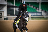 LOUISVILLE, KY - MAY 03: Tapwrit, owned by Bridlewood Farm, Eclipse Thoroughbred Partners, and Robert V. LaPenta and trained by Todd Pletcher, exercises in preparation for the Kentucky Derby at Churchill Downs on May 03, 2017 in Louisville, Kentucky. (Photo by Alex Evers/Eclipse Sportswire/Getty Images)