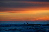 March 10, 2016 - San Diego, California, USA- A surfer rides a wave as the sun sets at La Jolla Shores beach in San Diego, California.  (Photo Credit: © K.C. ALFRED/ZUMA PRESS)