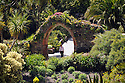 Tresco Abbey Gardens, Isles of Scilly.